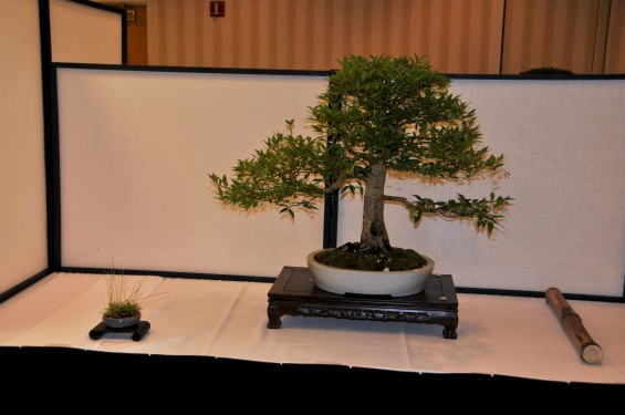 ll_convention_2010-02_n_17
