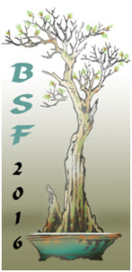 BSF2016logo