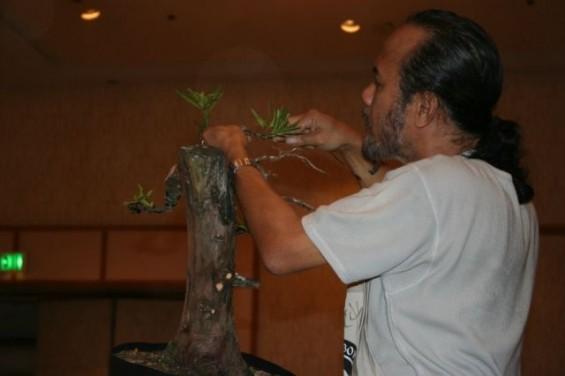 cp_convention_2010-01_n_22